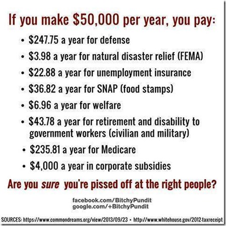 what you pay taxes for