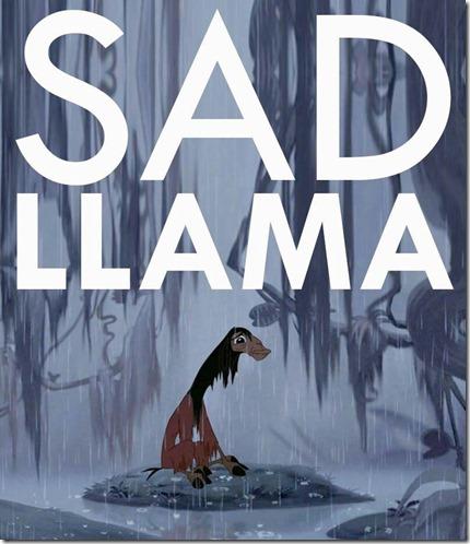 sad llama